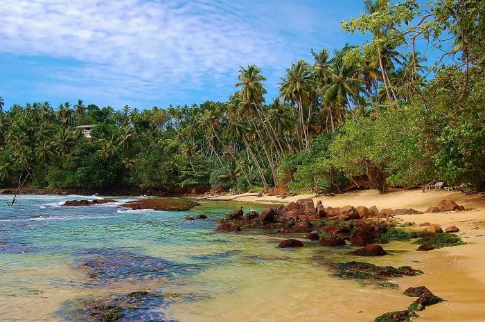 Mirissa, Sri Lanka.