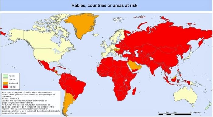 Występowanie wścieklizny na świecie (mapa WHO).