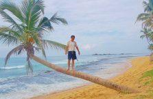 Sri Lanka - spacer po palmie w Hikkaduwa; Ocean Indyjski.