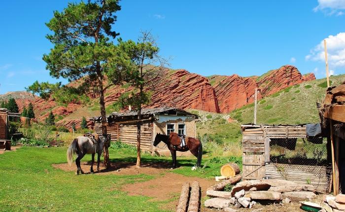 Piękny Kirgistan. Na zdjęciu konie na tle skał z czerwonego piaskowca w Jeti-Öghüz.