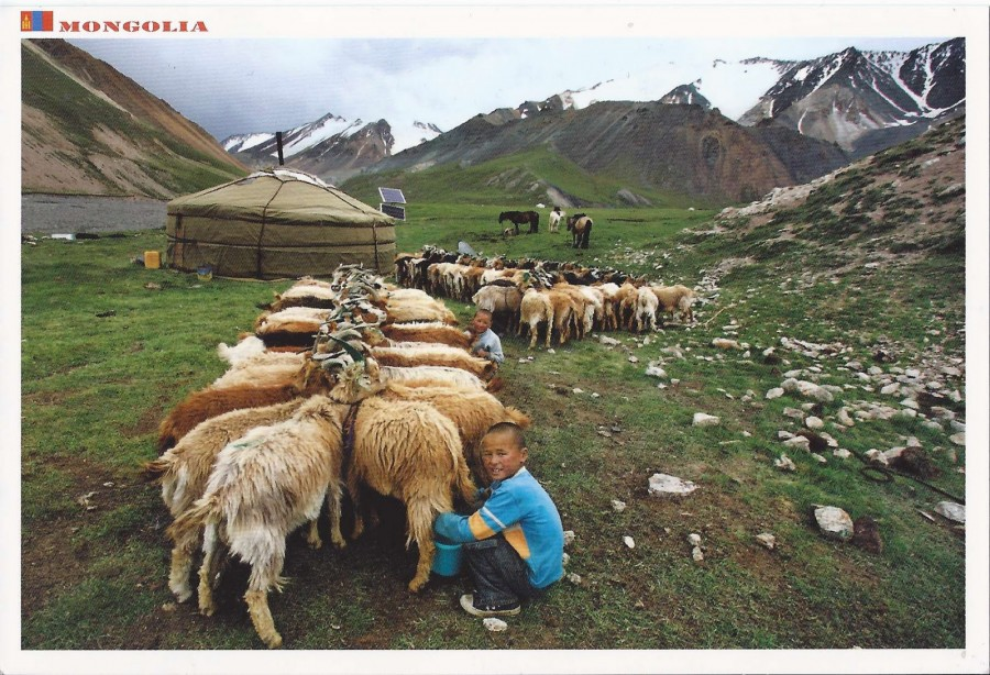 mongolia-postcard