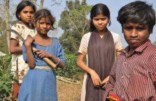 Bangladesz - dzieci na polach herbaty.