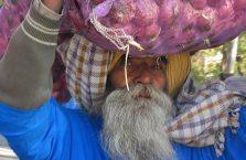 Indie - turban z cebulą.