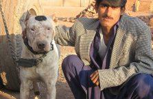 Pakistan - mężczyzna ze swoim biednym psem.