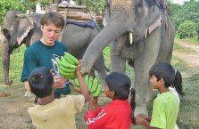 Nepal - słoń dobiera się do moich bananów.