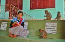 Birma - kobieta z małpami.