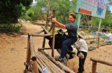 Wietnam - jazda na strusiu.