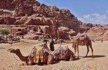 Jordania (Petra) - zdjęcie z wielbłądami.