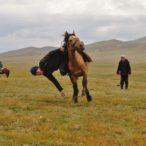 Kirgistan - festiwal z udziałem koni.