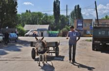 Kirgistan - ośli zaprzęg.