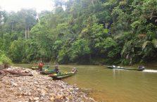 Brunei - Temburong (10)