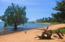 Clara beach Guimaras (1)
