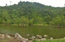 Dwa jeziora Negros (7)