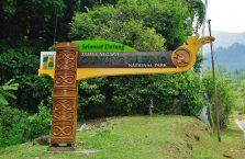Gunung Gading Borneo (1)