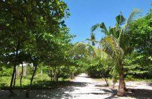 Kalanggaman Filipiny (3)
