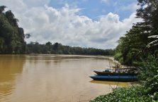 Kinabatangan Borneo (10)