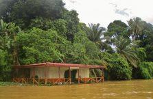 Kinabatangan Borneo (7)