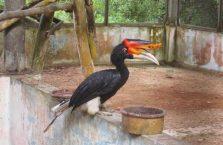 Labuan island Malaysia (21)