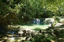 Locong Siquijor (4)