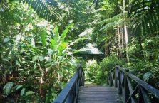 Lok Kawi Wildlife Park Borneo (25)