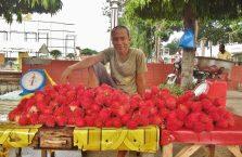 Mielizna Bais City Negros (12)