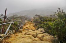 Mount Kinabalu Borneo (11)