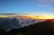 Mount Kinabalu Borneo (15)