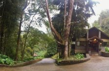 Mount Kinabalu Borneo (37)