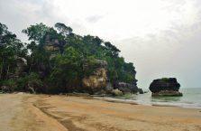 Park Narodowy Bako - Borneo (14)