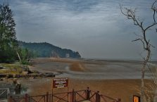 Park Narodowy Bako - Borneo (26)