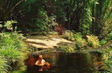 Park Narodowy Bako - Borneo (34)