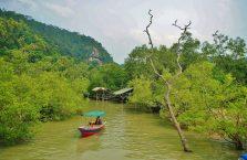 Park Narodowy Bako - Borneo (9)