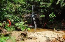 Park Narodowy Lambir Hills (12)