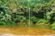 Park Narodowy Lambir Hills (6)