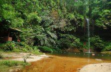 Park Narodowy Lambir Hills (7)