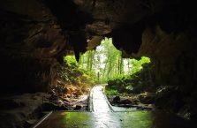 Park Narodowy Mulu Borneo (20)