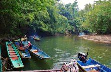 Park Narodowy Mulu Borneo (24)