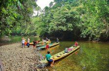 Park Narodowy Mulu Borneo (31)