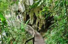 Park Narodowy Mulu Borneo (33)