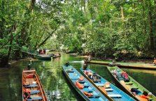 Park Narodowy Mulu Borneo (34)