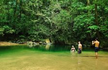 Park Narodowy Mulu Borneo (42)