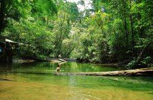 Park Narodowy Mulu Borneo (43)