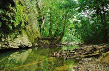 Park Narodowy Mulu Borneo (45)