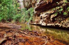 Park Narodowy Mulu Borneo (46)