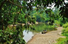Park Narodowy Mulu Borneo (5)