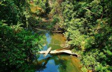Park Narodowy Mulu Borneo (51)