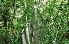 Park Narodowy Mulu Borneo (53)