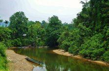Park Narodowy Mulu Borneo (7)