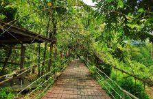 Park Narodowy Mulu Borneo (8)