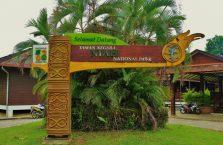Park Narodowy Niah Borneo (1)